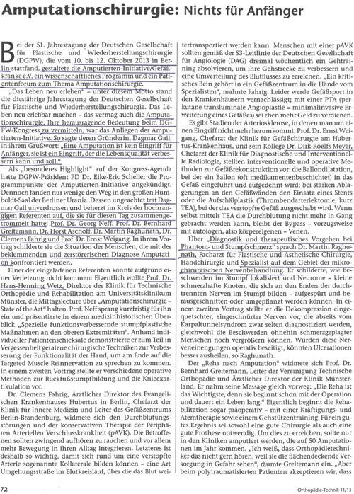 Artikel aus der Fachzeitschrift ORTHOPÄDIE-TECHNIK 11/ 2013 von Jana Ehrhardt-Joswig